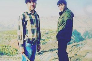 سعید و مسعود زالی پور www.gezal.ir